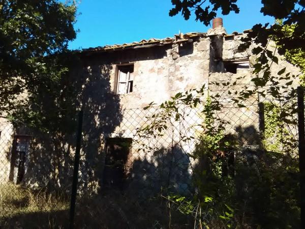 Rustico/Casale in vendita a Vetralla, 140 mq