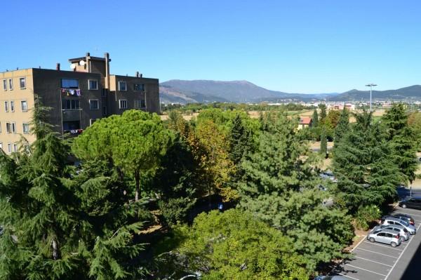 Appartamento in vendita a Campi Bisenzio, Poste, Con giardino, 90 mq