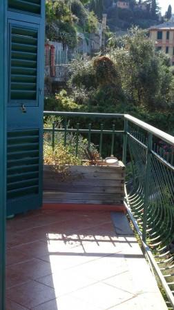 Appartamento in affitto a Camogli, Case Rosse, Arredato, 65 mq - Foto 34