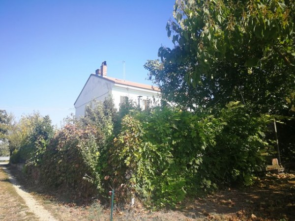 Locale Commerciale  in vendita a Rocchetta Tanaro, Castagnassa, Con giardino, 225 mq - Foto 17