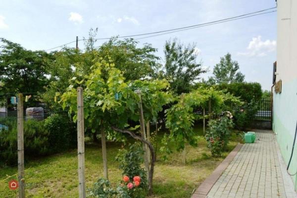 Locale Commerciale  in vendita a Rocchetta Tanaro, Castagnassa, Con giardino, 225 mq - Foto 19