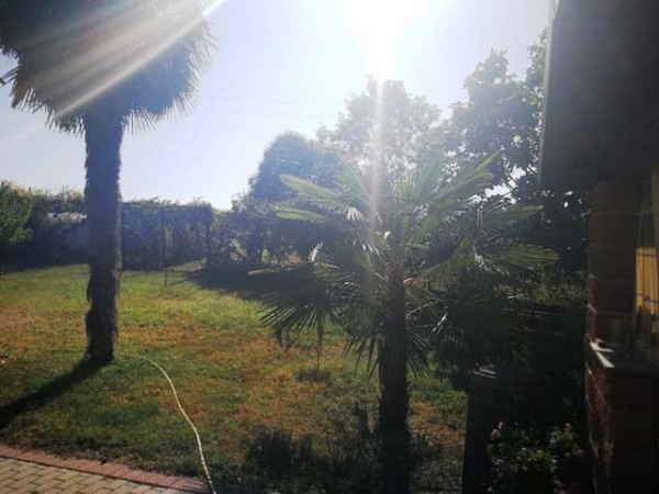 Locale Commerciale  in vendita a Rocchetta Tanaro, Castagnassa, Con giardino, 225 mq - Foto 8