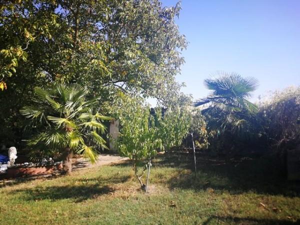 Locale Commerciale  in vendita a Rocchetta Tanaro, Castagnassa, Con giardino, 225 mq - Foto 15