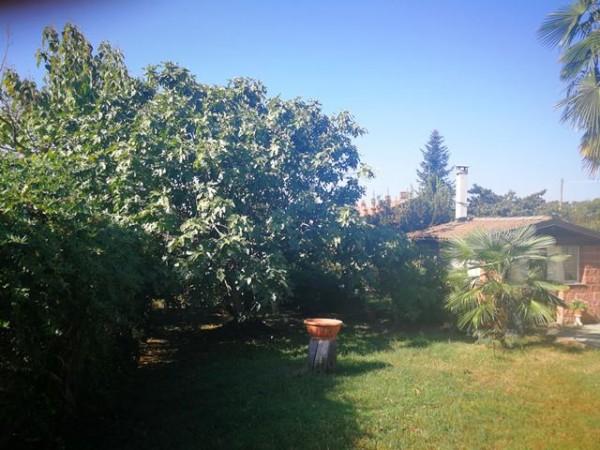 Locale Commerciale  in vendita a Rocchetta Tanaro, Castagnassa, Con giardino, 225 mq - Foto 16