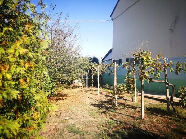 Locale Commerciale  in vendita a Rocchetta Tanaro, Castagnassa, Con giardino, 225 mq - Foto 10