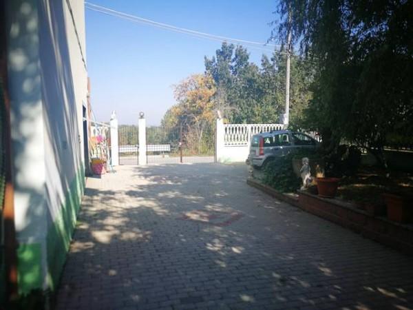 Locale Commerciale  in vendita a Rocchetta Tanaro, Castagnassa, Con giardino, 225 mq - Foto 7