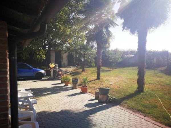 Locale Commerciale  in vendita a Rocchetta Tanaro, Castagnassa, Con giardino, 225 mq - Foto 9