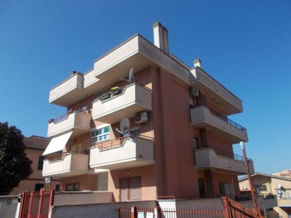 Appartamento in affitto a Roma, Ottavia, Arredato, 60 mq