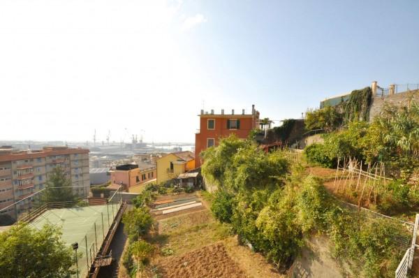 Appartamento in vendita a Genova, Sestri Ponente, Con giardino, 115 mq