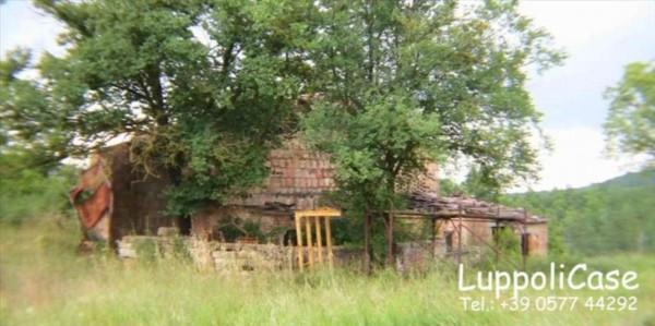 Villa in vendita a Murlo, Con giardino, 500 mq - Foto 3