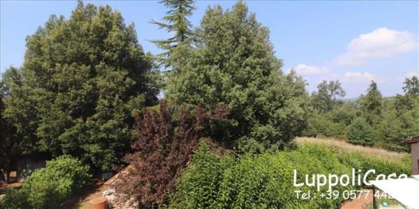 Villa in vendita a Sovicille, Con giardino, 180 mq - Foto 9