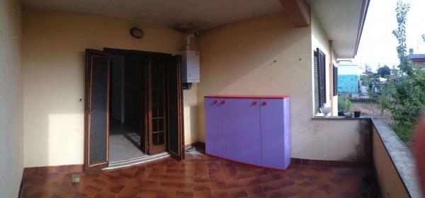Villa in affitto a Pomezia, Martin Pescatore, 110 mq - Foto 7