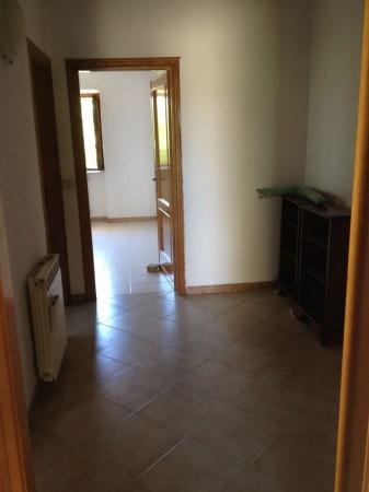 Villa in affitto a Pomezia, Martin Pescatore, 110 mq - Foto 11