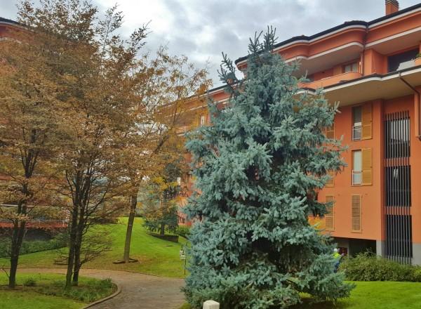Appartamento in vendita a Cassano d'Adda, Centrale, Con giardino, 160 mq - Foto 23