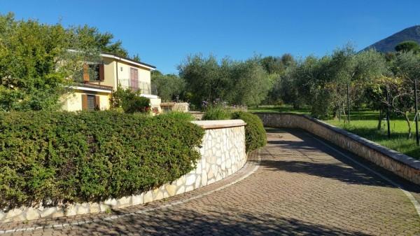 Villa in vendita a Palombara Sabina, San Francesco, Con giardino, 300 mq