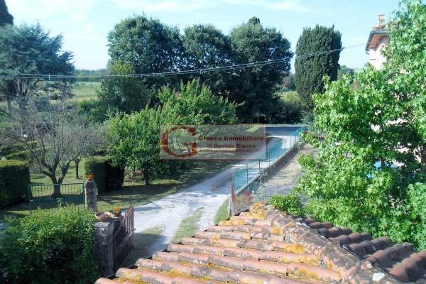 Casa indipendente in vendita a Vicopisano, Con giardino, 335 mq - Foto 8
