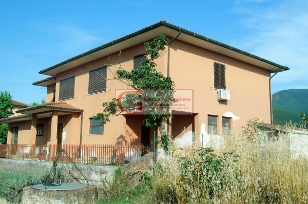 Casa indipendente in vendita a Vicopisano, Con giardino, 335 mq - Foto 6