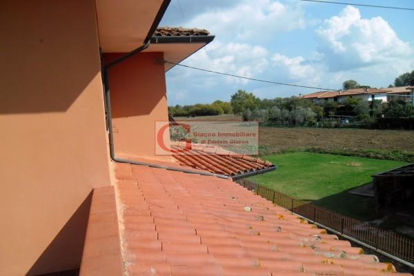 Casa indipendente in vendita a Vicopisano, Con giardino, 335 mq - Foto 26