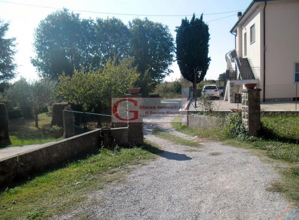 Casa indipendente in vendita a Vicopisano, Con giardino, 335 mq - Foto 7