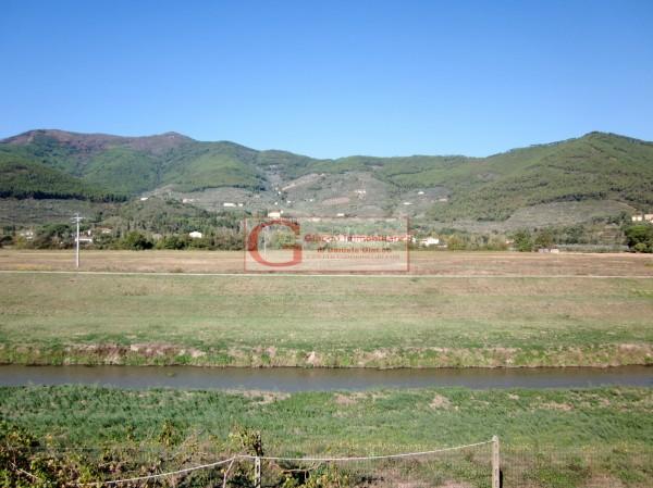 Casa indipendente in vendita a Vicopisano, Con giardino, 335 mq - Foto 25