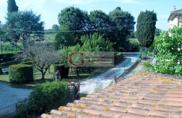 Casa indipendente in vendita a Vicopisano, Con giardino, 335 mq - Foto 9