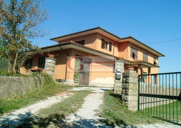 Casa indipendente in vendita a Vicopisano, Con giardino, 335 mq - Foto 3