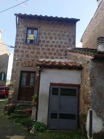 Casa indipendente in vendita a Villa San Giovanni in Tuscia, 55 mq