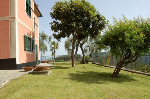 Villa in vendita a Rapallo, Castellino, Con giardino, 290 mq