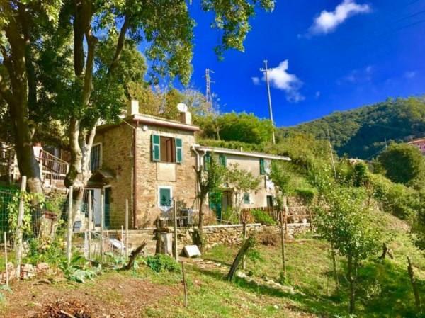 Rustico/Casale in vendita a Vernazza, Reggio, Con giardino, 200 mq