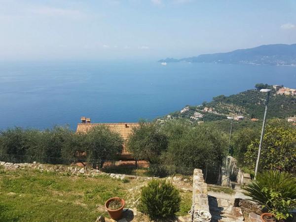 Villa in vendita a Chiavari, S. Andrea Di Rovereto, Con giardino, 180 mq - Foto 7