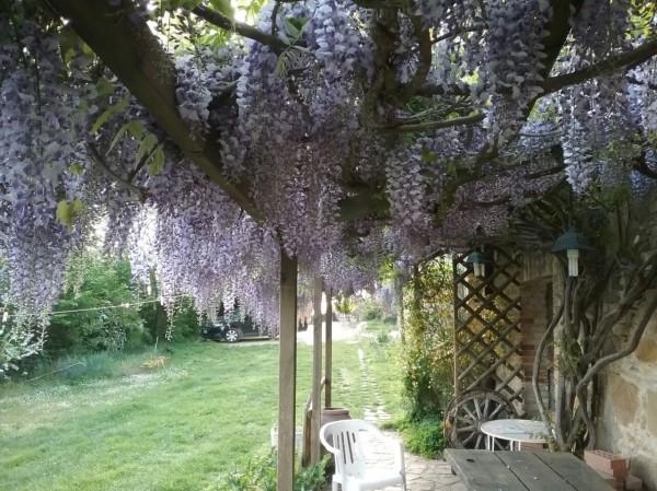 Rustico/Casale in vendita a Magione, Borgogiglione, Con giardino, 400 mq - Foto 3