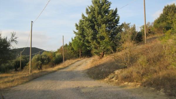 Rustico/Casale in vendita a Magione, Borgogiglione, Con giardino, 400 mq - Foto 44