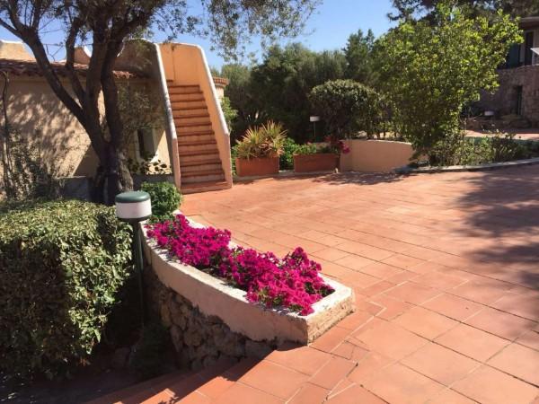 Appartamento in affitto a Arzachena, Arredato, con giardino, 60 mq