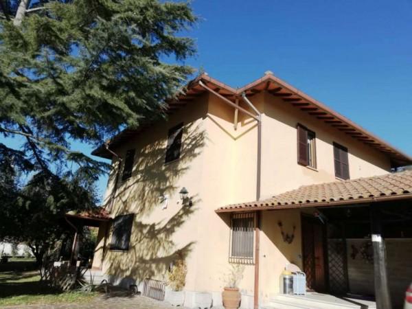 Appartamento in affitto a Roma, Vallesanta, Arredato, con giardino, 28 mq
