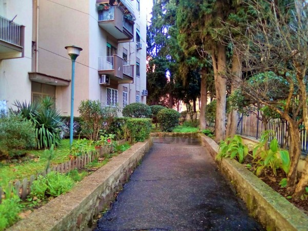 Appartamento in affitto a Roma, Tuscolana, Arredato, con giardino, 60 mq