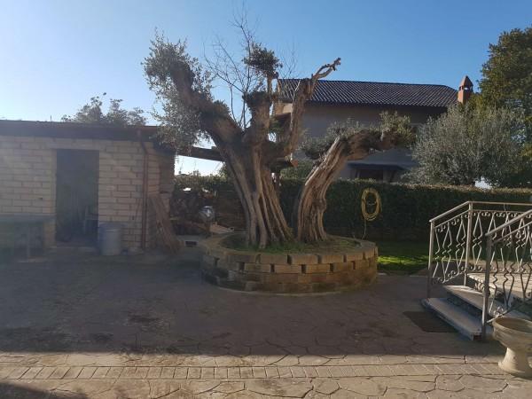 Appartamento in vendita a Formello, Con giardino, 170 mq - Foto 39