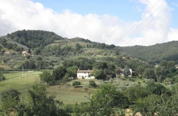 Rustico/Casale in vendita a Torgiano, B, Con giardino, 240 mq