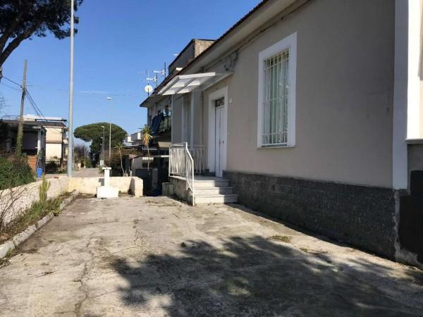 Appartamento in affitto a Sant'Anastasia, Con giardino, 50 mq