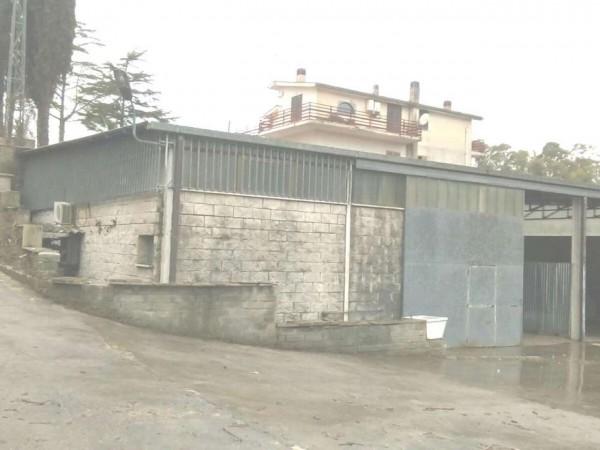 Capannone in vendita a Aprilia, La Cogna, 270 mq
