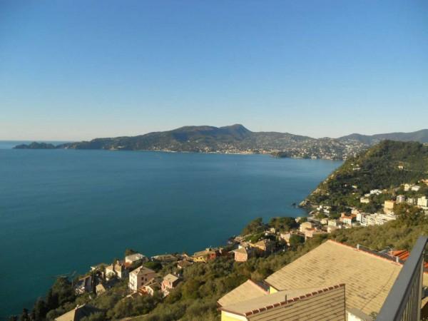 Villa in vendita a Zoagli, Sant'andrea Di Rovereto, Con giardino, 160 mq