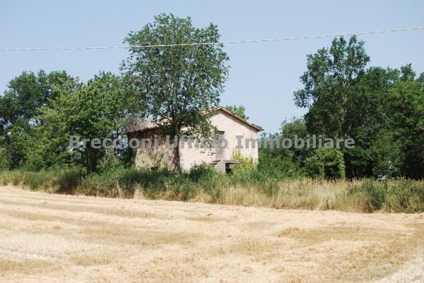 Rustico/Casale in vendita a Montefalco, Fabbri, Con giardino, 70 mq