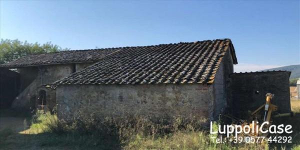 Villa in vendita a Sovicille, Con giardino, 787 mq - Foto 11