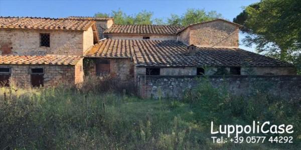 Villa in vendita a Sovicille, Con giardino, 787 mq - Foto 1
