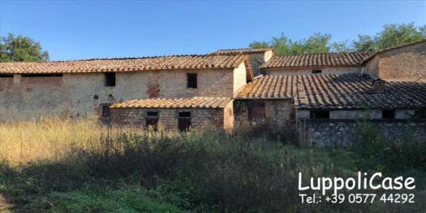 Villa in vendita a Sovicille, Con giardino, 787 mq - Foto 13
