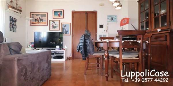 Appartamento in vendita a Castelnuovo Berardenga, 60 mq