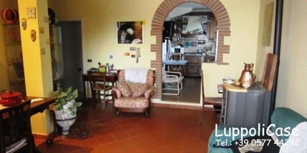 Villa in vendita a Castelnuovo Berardenga, Con giardino, 270 mq - Foto 6