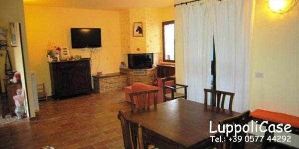 Villa in vendita a Castelnuovo Berardenga, Con giardino, 270 mq