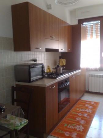 Appartamento in affitto a Spoleto, Prima Periferia, 50 mq