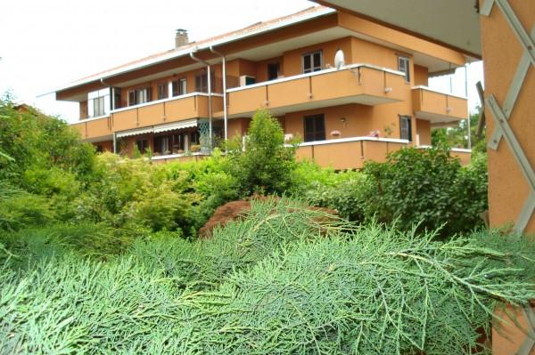 Appartamento in affitto a Cesate, 180 mq