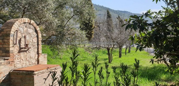 Casa indipendente in affitto a Trevi, Pigge, Con giardino, 180 mq - Foto 4